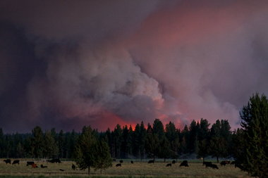 Rooster Rock Fire_Thomas Boyd_The Oregonian
