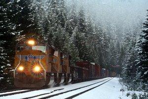 Bruce Fingerhood Snow Train Heather Oregon 2