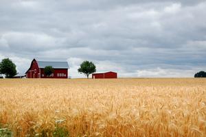 Edmund Garman Kepham Farm Marion County