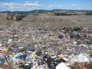 Stop the Dump_Robert Delahanty