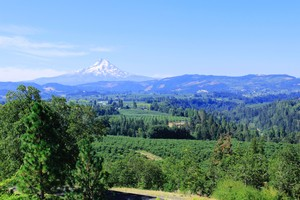 Hood River Valley Orchard_CC