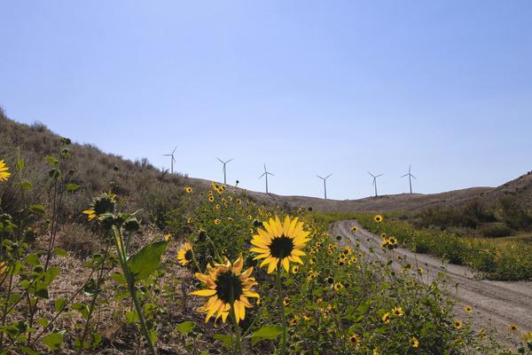 Renewable Energy_BLM_CC